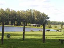 parque con animales en san nicanor